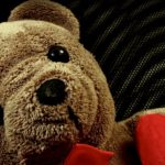 LOUIS the Bear Has Had Enough!